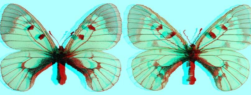 Apollon_Mnemosina1.jpg